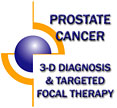 Prostate Cancer - 3-D Diagnosis and Targeted Focal Therapy